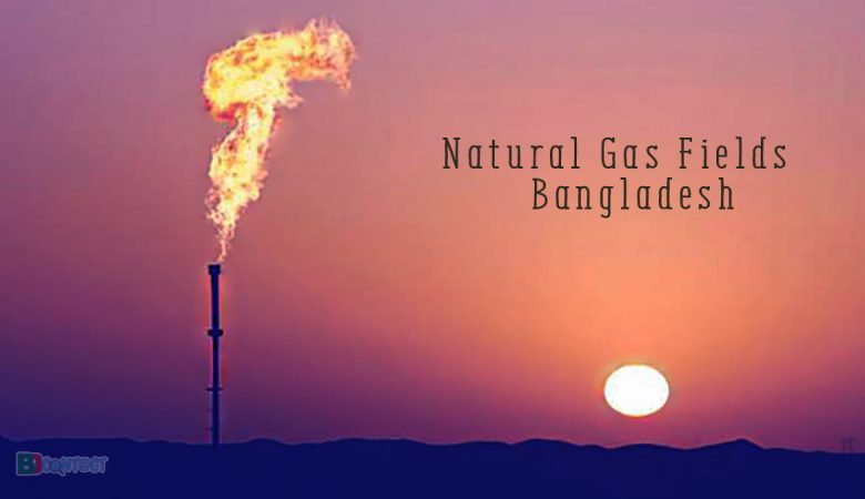 Natural Gas Fields In Bangladesh: Probability And Resources